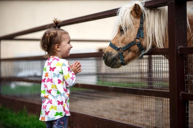 白人の外観の少女は、農場の厩舎でポニー馬を楽しんでいます。幸せな子供、動物とのコミュニケーション、動物園、感情。