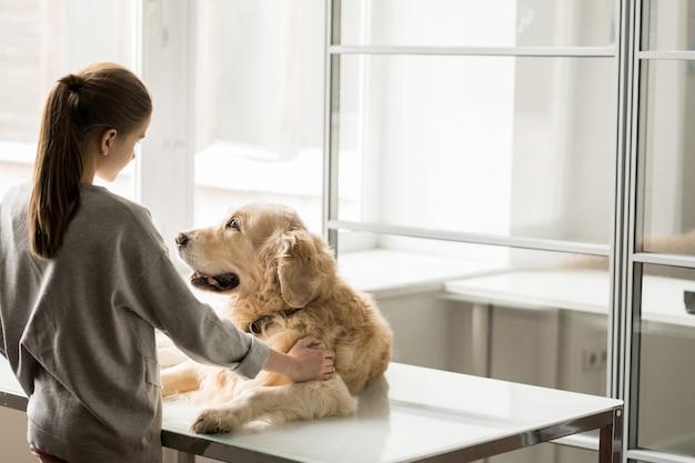Маленькая девочка ласкает лабрадорскую собаку, стоя у медицинского стола, где он лежит внутри ветеринарной клиники