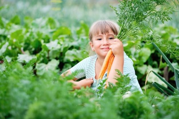 庭でニンジンを選ぶ少女。秋の野菜の収穫。