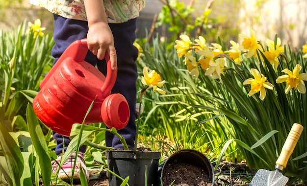 Bambina piantare fiori nel giardino