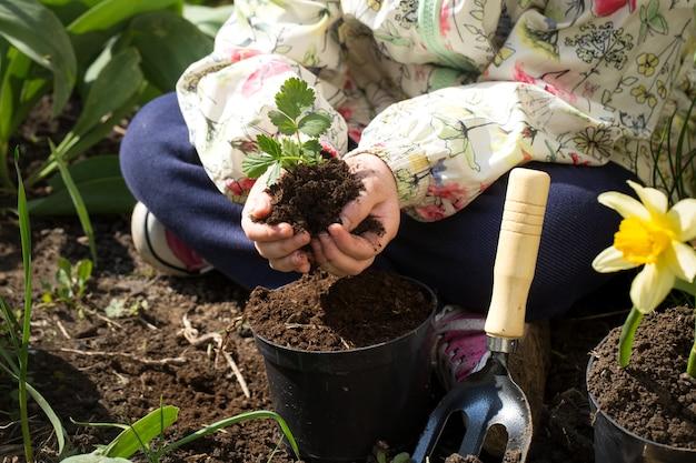Маленькая девочка сажает цветы в саду