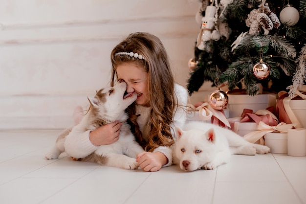 Little girl playing with husky puppies near christmas tree