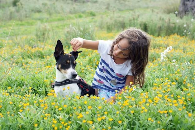 Маленькая девочка играет с джек-рассел-терьером