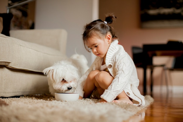 Little girl playing with white dog in the room
