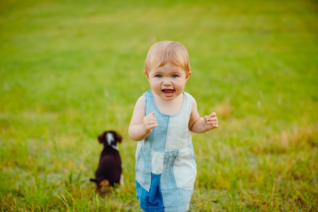 Little girl plays with puppy on the field
