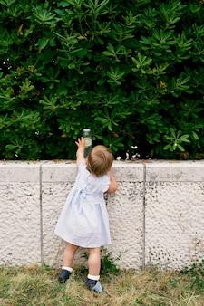 어린 소녀는 녹색 덤불 앞 울타리에 물 한 병 서에 도달