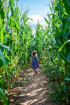 Маленькая девочка убегает в кукурузном поле