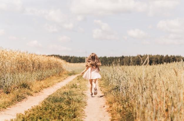 A little girl runs through a wheat field. rear view. follow to cute happy child