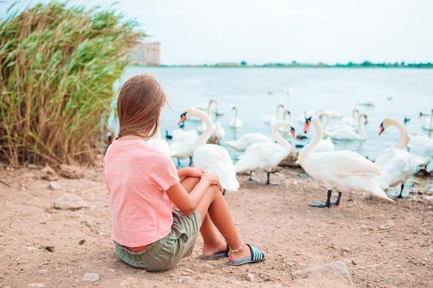 Маленькая девочка сидит на пляже с лебедями и кормит их