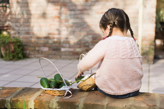 Little girl sitting on wall collecting avocado in basket