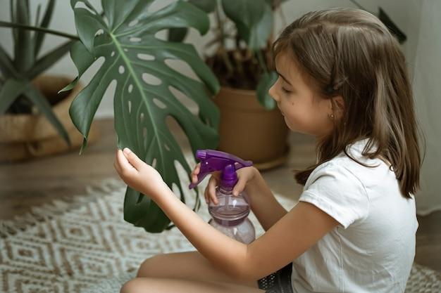植物モンステラの世話をしながら、観葉植物の葉をスプレーする少女。