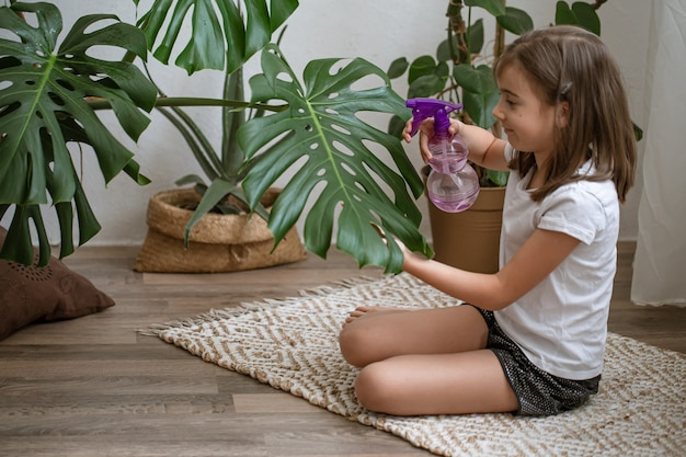 Little girl spraying houseplant leaves, taking care of plant monstera.