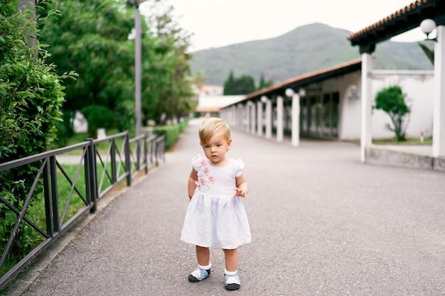 어린 소녀는 금속 울타리 근처 녹색 공원에서 아스팔트 경로에 서
