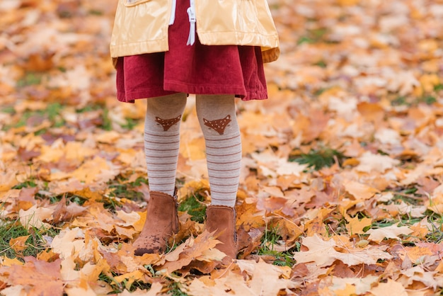 Little girl walking in park with leaf autumn nature garden