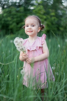 小さな女の子は、夕日の光の中で色あせたタンポポと一緒にフィールドを歩きます。