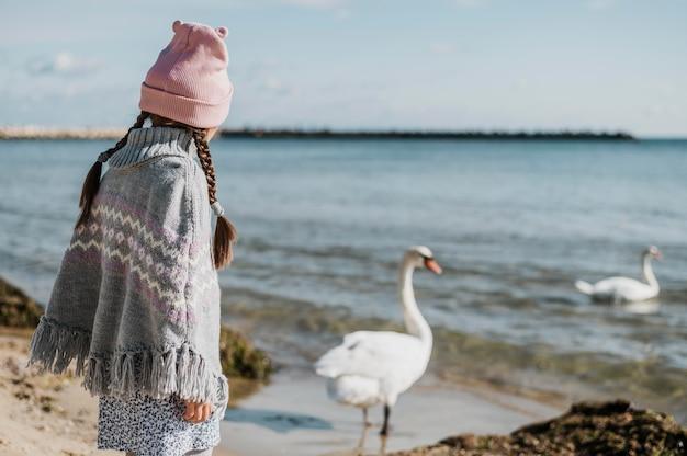 Маленькая девочка смотрит на лебедей