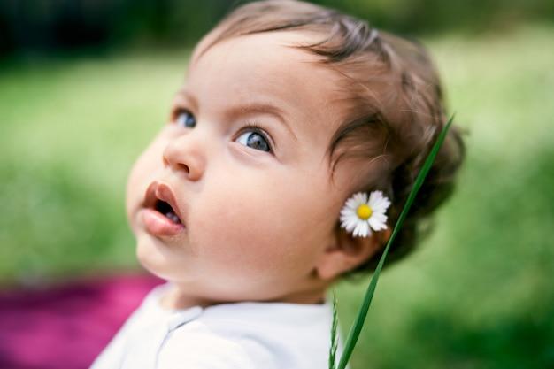 彼女の耳のクローズアップの肖像画の後ろにカモミールを持つ少女