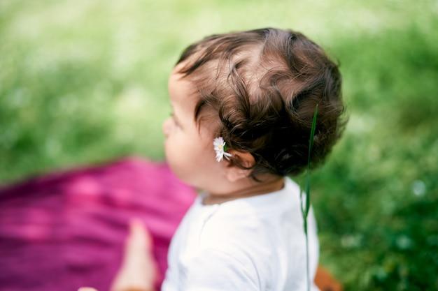 彼女の耳の後ろにカモミールを持つ少女は芝生の上面図に座っています