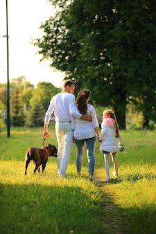 Маленькая девочка с беременной матерью, счастливым отцом и собакой на прогулке в парке