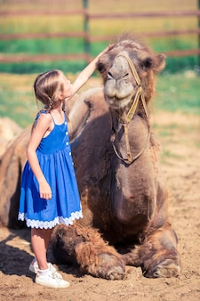 Little girl with camels in the zoo on warm and sunny summer day. active family leisure.