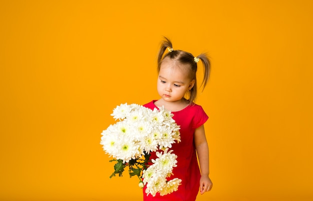 A little girl with ponytails in a red dress holds a bouquet of white flowers on a yellow surface with space for text