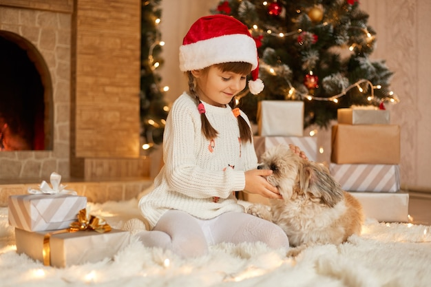 Little girl with puppy sitting on floor near fir tree, child playing with pekingese dog in festive living room, kid wearing white jumper and santa claus hat, adorable preschooler on christmas eve.