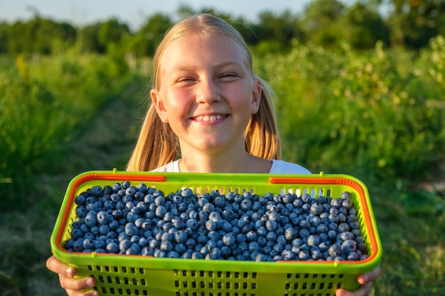 Little girl with toothy smile which harvests blueberries and holds a basket