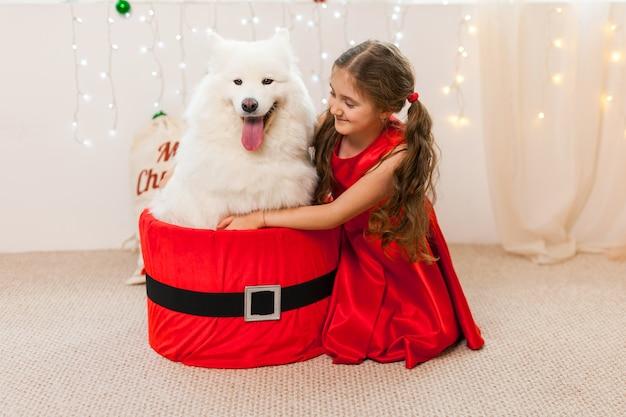 Маленькая девочка с белой самоедской собакой сидит в коробке санта-клауса
