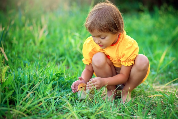 Little girl in a yellow dress sits in the grass and plays with a little chicken