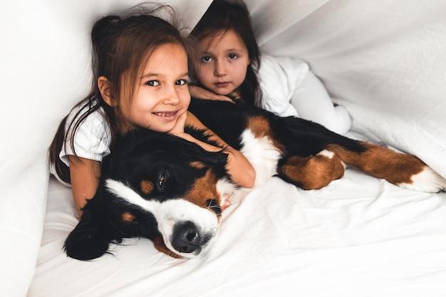 강아지와 함께 침대에서 어린 소녀 bernese mountain dog