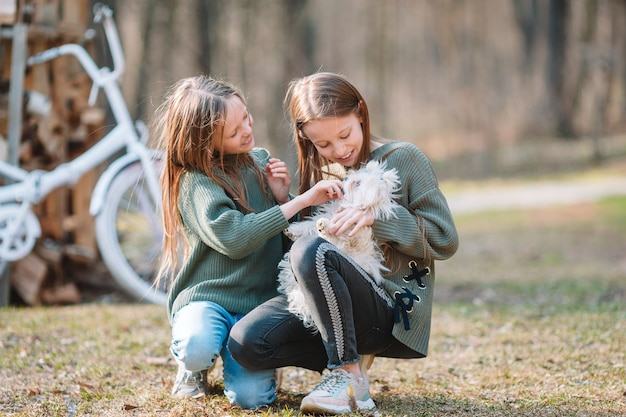 Little girls with a white puppy. a puppy in the hands of a girls