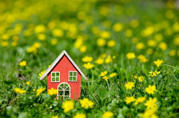 Little house on meadow with yellow flowers in spring time