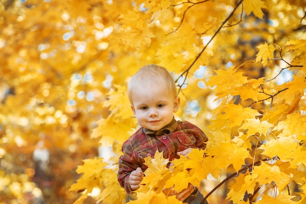 Little kid boy in the park on autumn leaves. selective focus.