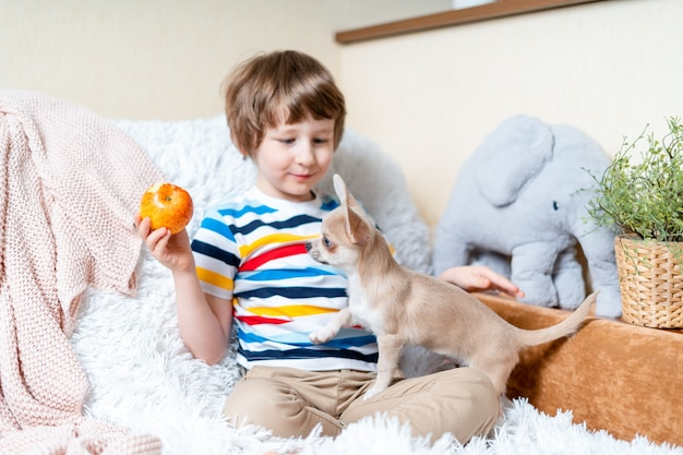 Little kid boy playing with puppy
