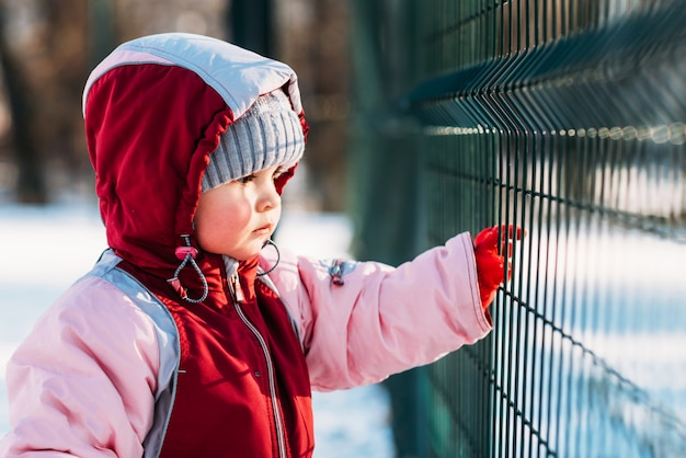 Little kid looks through the bars in winter