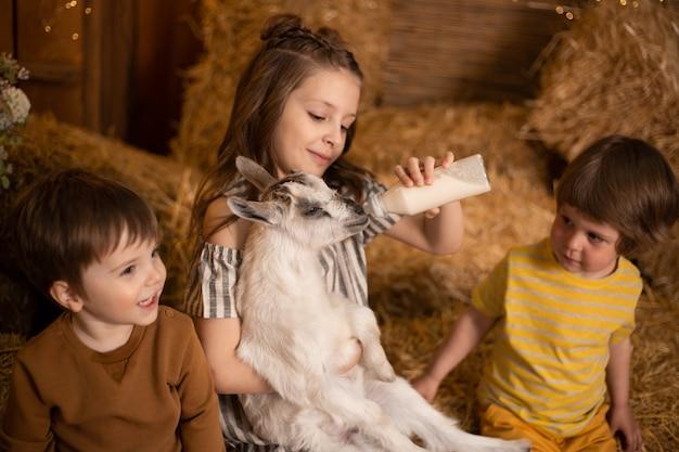 Маленькие дети играют и кормят козу бутылкой молока