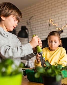 家で作物に水をまく小さな子供たち