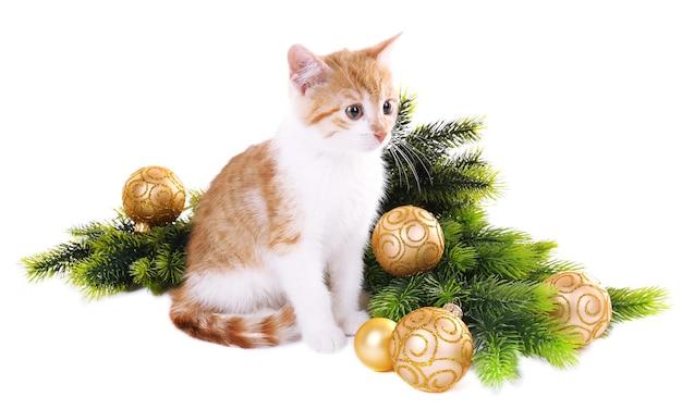 Маленький котенок с рождественскими украшениями, изолированные на белом фоне