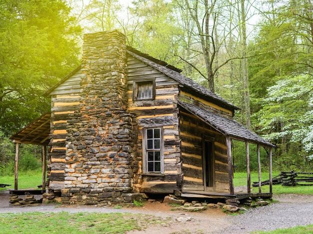 Бревенчатый домик в лесу, одинокий бревенчатый домик в зеленом лесу