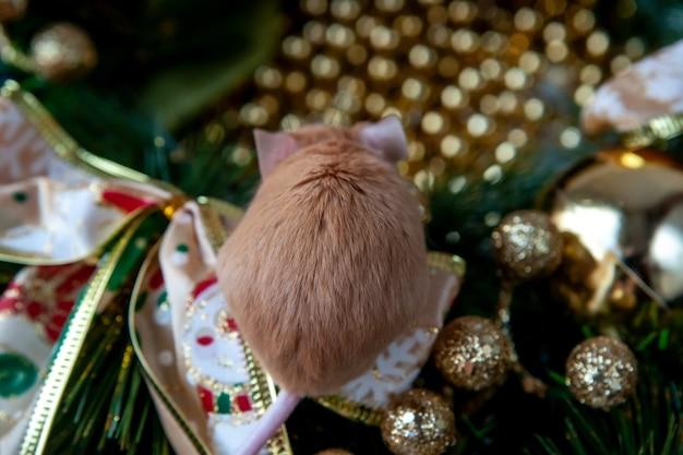クリスマスの飾りの背景に小さなマウス