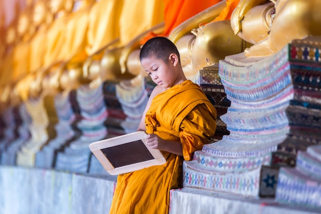Little novice reading and studying blackboard with funny in old temple