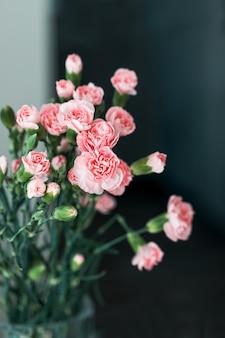 꽃병에 작은 분홍색 카네이션 꽃