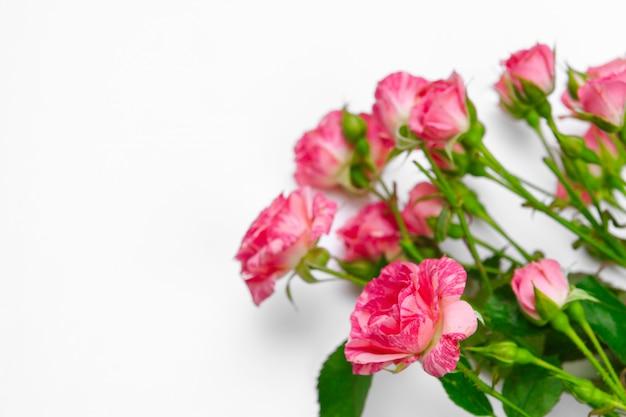 白いテーブルに小さなピンクのバラ。穏やかなロマンチック。フローラル