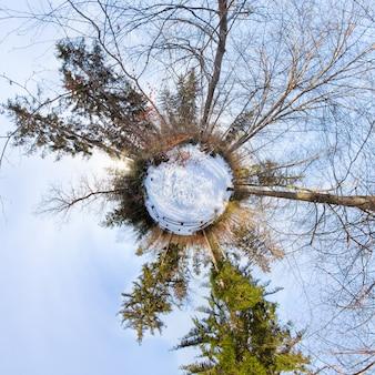 青い空と森の中の小さな惑星