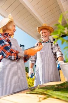Маленькое растение. сияющая женщина на пенсии чувствует себя счастливой, держа в руках маленькое домашнее растение, слышит своего мужа
