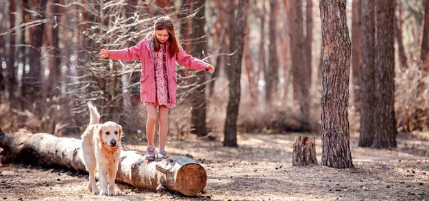 小さなプレティーンの女の子は、春の森でかわいいゴールデンレトリバー犬と一緒に乾いた丸太の上を歩きます