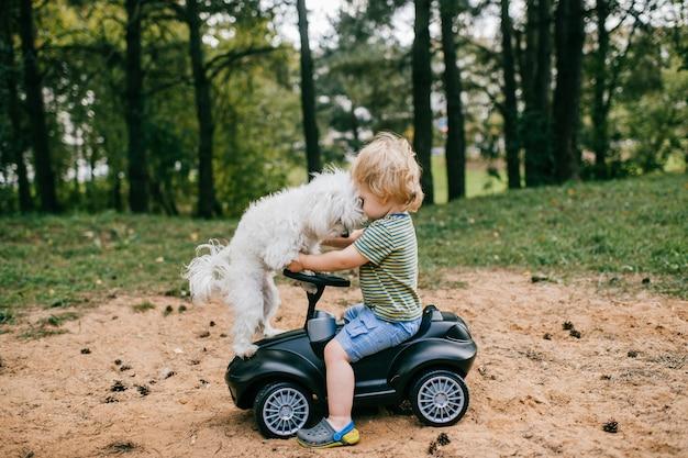 Маленький симпатичный кавказский мальчик с короткими светлыми волосами в летней одежде едет на игрушечной черной машине в большом парке со своей милой белой собакой.