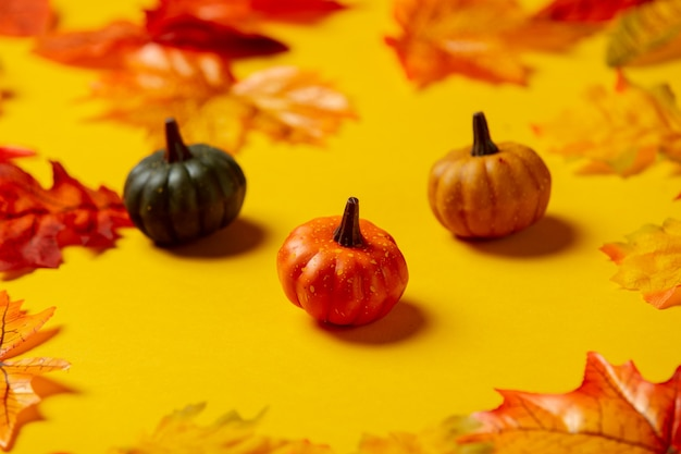 Little pumpkins with autumn leaves on yellow background. top view