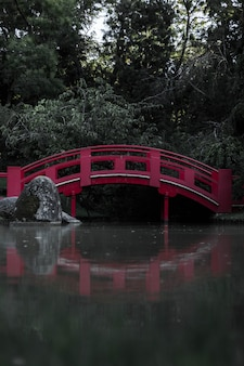 Little red bridge reflecting on the water in a forest covered in greenery under sunlight