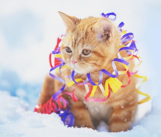 Маленький рыжий котенок, завернутый в серпантин, сидит на улице на снегу зимой